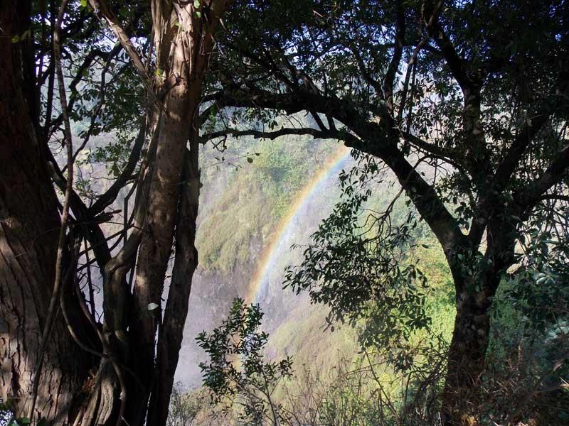 orobica-viaggi-botswana-okavango-delta